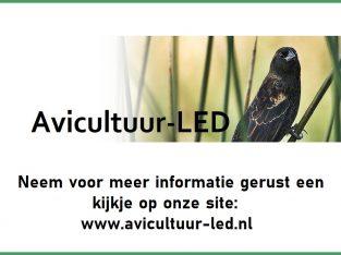 LED installatie op maat voor uw vogelkooi(en)
