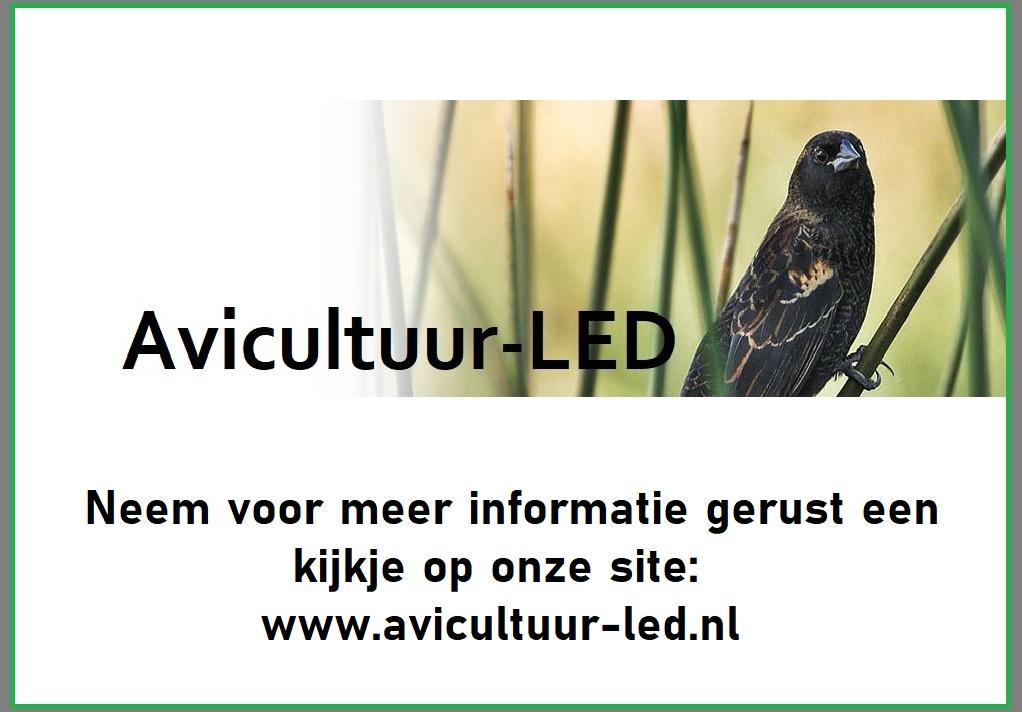 Compleet assortiment LED verlichting